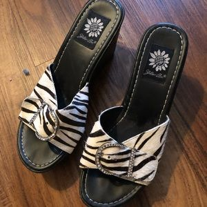 Zebra hair wedges